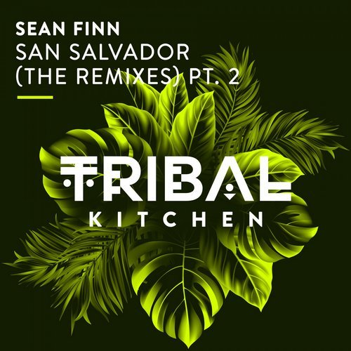 Sean Finn - San Salvador (No Hopes Remix)