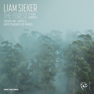 Liam Sieker - The Forest feat. Alice Campbell (Doppel Remix)
