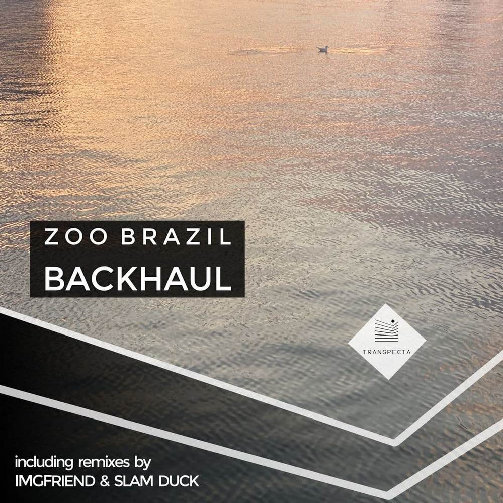 Zoo Brazil - Backhaul (Original Mix)